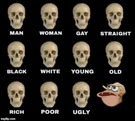 Just this | image tagged in idiot skull,spongegar | made w/ Imgflip meme maker