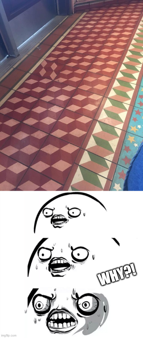 OCD |  WHY?! | image tagged in ocd,floor,why | made w/ Imgflip meme maker