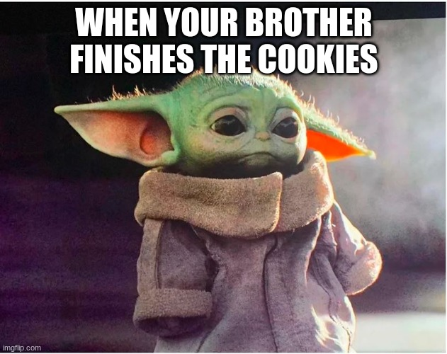 Sad Baby Yoda |  WHEN YOUR BROTHER FINISHES THE COOKIES | image tagged in sad baby yoda | made w/ Imgflip meme maker