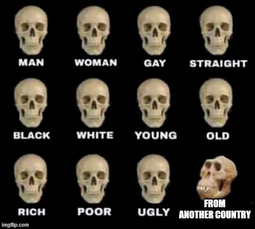 idiot skull |  FROM ANOTHER COUNTRY | image tagged in idiot skull | made w/ Imgflip meme maker