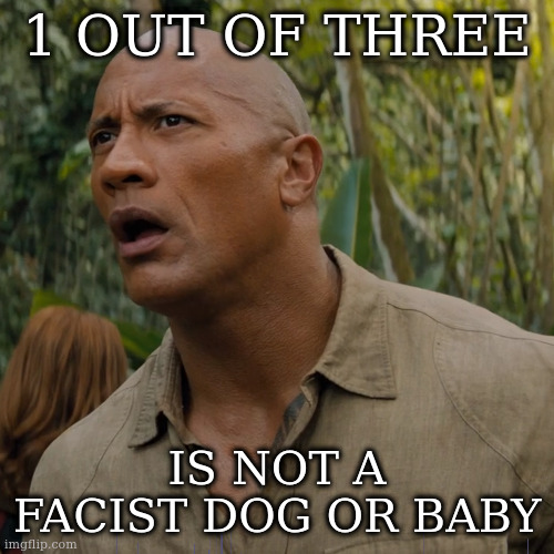 Let my brain catch up | 1 OUT OF THREE IS NOT A FACIST DOG OR BABY | image tagged in let my brain catch up | made w/ Imgflip meme maker
