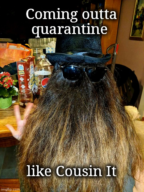Coming outta quarantine like Cousin It |  Coming outta quarantine; like Cousin It | image tagged in addams family,cousin,hairstyle,haircut,coronavirus,upvote | made w/ Imgflip meme maker