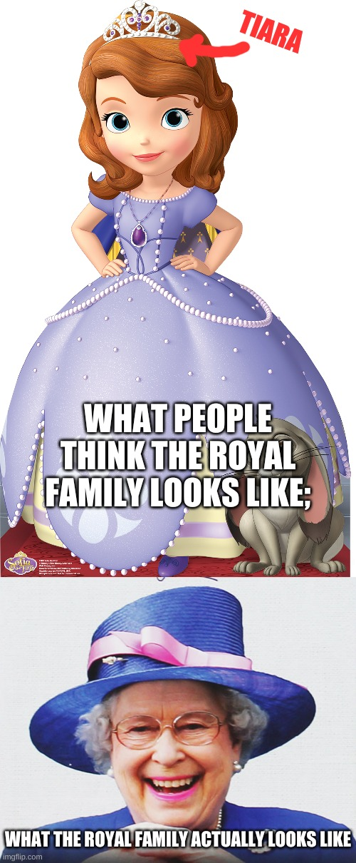 The queen likes her hat |  TIARA; WHAT PEOPLE THINK THE ROYAL FAMILY LOOKS LIKE;; WHAT THE ROYAL FAMILY ACTUALLY LOOKS LIKE | image tagged in queen elizabeth,queen of england | made w/ Imgflip meme maker