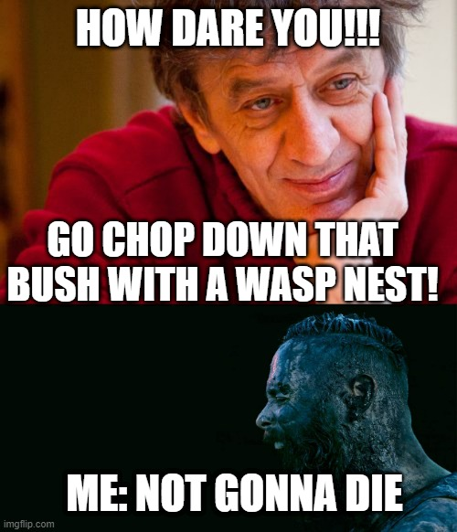 i know it's the wrong album cover but still... |  HOW DARE YOU!!! GO CHOP DOWN THAT BUSH WITH A WASP NEST! ME: NOT GONNA DIE | image tagged in memes,really evil college teacher,john cooper shouting - skillet - unleashed 2016 | made w/ Imgflip meme maker