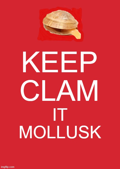 Keep Calm And Carry On Red |  KEEP CLAM; IT MOLLUSK | image tagged in memes,keep calm and carry on red | made w/ Imgflip meme maker