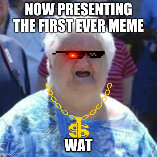 WAT Lady |  NOW PRESENTING THE FIRST EVER MEME; WAT | image tagged in wat lady | made w/ Imgflip meme maker