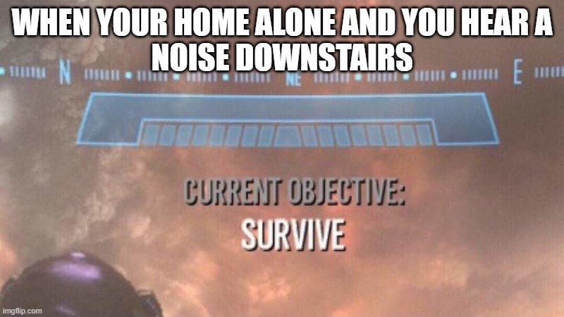 My First Meme |  WHEN YOUR HOME ALONE AND YOU HEAR A NOISE DOWNSTAIRS | image tagged in current objective survive | made w/ Imgflip meme maker
