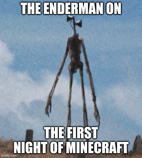 siren head |  THE ENDERMAN ON; THE FIRST NIGHT OF MINECRAFT | image tagged in siren head | made w/ Imgflip meme maker