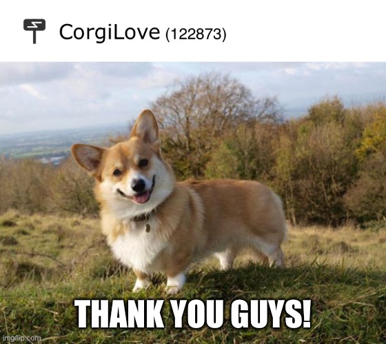 Yay, 120,000 points! |  THANK YOU GUYS! | image tagged in corgi | made w/ Imgflip meme maker