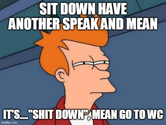 "Futurama Fry Meme |  SIT DOWN HAVE ANOTHER SPEAK AND MEAN; IT'S....""SHIT DOWN"", MEAN GO TO WC 