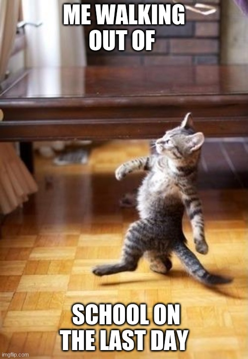 Seniors Be Like: |  ME WALKING OUT OF; SCHOOL ON THE LAST DAY | image tagged in memes,cool cat stroll,school,cat,high school | made w/ Imgflip meme maker