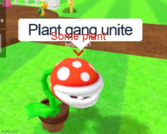 Plant gang unite | image tagged in plant gang unite | made w/ Imgflip meme maker