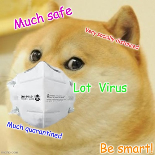 Stay safe! |  Much safe; Very socially distanced; Lot  Virus; Much quarantined; Be smart! | image tagged in covid-19,quarantine,doge,funny memes | made w/ Imgflip meme maker