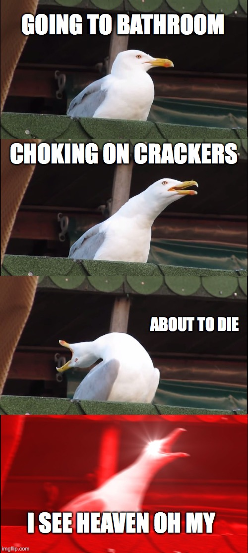 Inhaling Seagull Meme |  GOING TO BATHROOM; CHOKING ON CRACKERS; ABOUT TO DIE; I SEE HEAVEN OH MY | image tagged in memes,inhaling seagull | made w/ Imgflip meme maker
