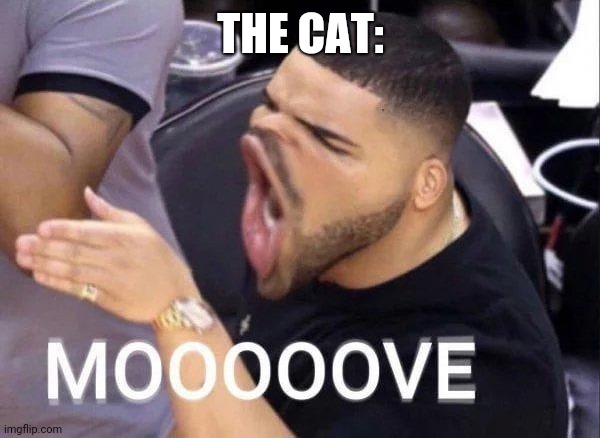 Mooooove | THE CAT: | image tagged in mooooove | made w/ Imgflip meme maker