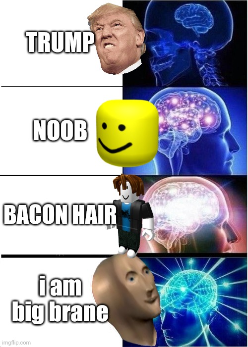 BEHOLD: The Trewth |  TRUMP; NOOB; BACON HAIR; i am big brane | image tagged in expanding brain,trump,noob,bacon hair,surreal | made w/ Imgflip meme maker