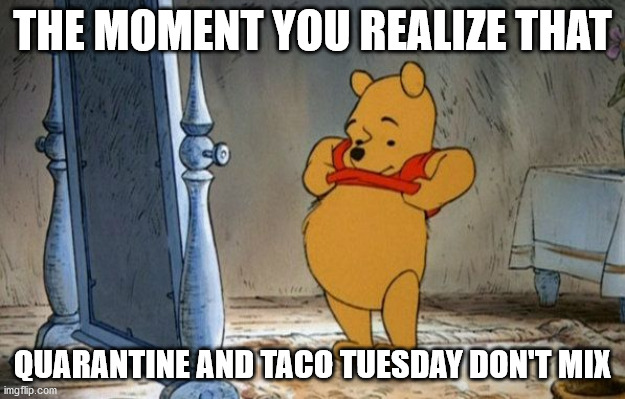 Winnie the Pooh in front of a Mirror |  THE MOMENT YOU REALIZE THAT; QUARANTINE AND TACO TUESDAY DON'T MIX | image tagged in winnie the pooh mirror,taco tuesday | made w/ Imgflip meme maker