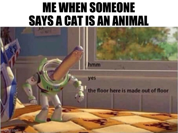Well, obviously -_- |  ME WHEN SOMEONE SAYS A CAT IS AN ANIMAL | image tagged in hmm yes the floor here is made out of floor,memes | made w/ Imgflip meme maker