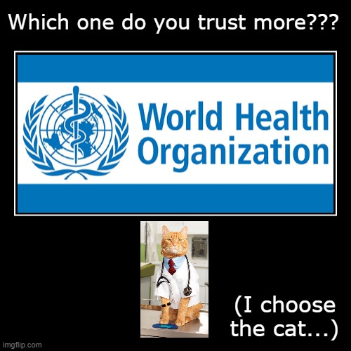 Which one??? | Which one do you trust more??? | (I choose the cat...) | image tagged in funny,demotivationals,who,cat,doctor | made w/ Imgflip demotivational maker