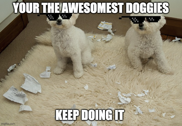 Dog Ate Homework |  YOUR THE AWESOMEST DOGGIES; KEEP DOING IT | image tagged in dog ate homework | made w/ Imgflip meme maker