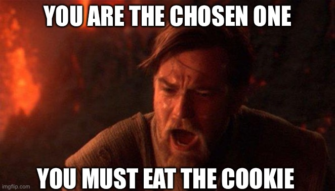 You Were The Chosen One (Star Wars) |  YOU ARE THE CHOSEN ONE; YOU MUST EAT THE COOKIE | image tagged in memes,you were the chosen one star wars | made w/ Imgflip meme maker