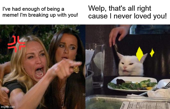me don't vote for upvotes. I swear. |  I've had enough of being a meme! I'm breaking up with you! Welp, that's all right cause I never loved you! | image tagged in memes,woman yelling at cat | made w/ Imgflip meme maker
