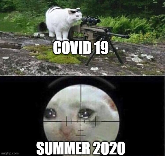 Corona virus,summer2020, COVID 19 |  COVID 19; SUMMER 2020 | image tagged in sniper cat | made w/ Imgflip meme maker