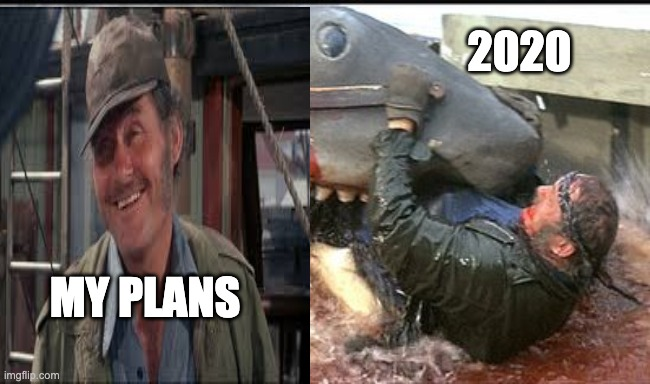 My Plans |  2020; MY PLANS | image tagged in 2020 | made w/ Imgflip meme maker