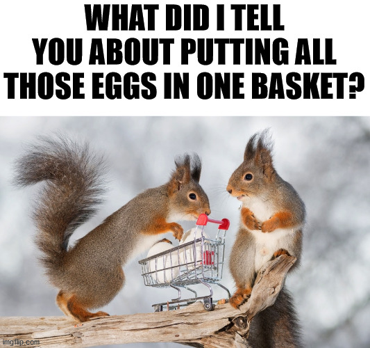 We all know what happens. |  WHAT DID I TELL YOU ABOUT PUTTING ALL THOSE EGGS IN ONE BASKET? | image tagged in sayings,eggs,squirrels | made w/ Imgflip meme maker