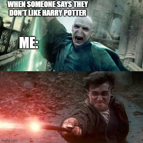 Harry Potter meme |  WHEN SOMEONE SAYS THEY DON'T LIKE HARRY POTTER; ME: | image tagged in harry potter meme | made w/ Imgflip meme maker