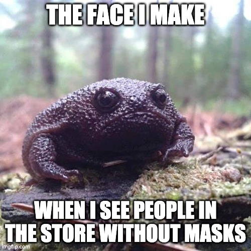 Judging you |  THE FACE I MAKE; WHEN I SEE PEOPLE IN THE STORE WITHOUT MASKS | image tagged in angry avocado | made w/ Imgflip meme maker