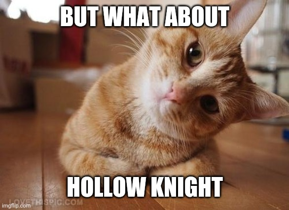 Curious Question Cat | BUT WHAT ABOUT HOLLOW KNIGHT | image tagged in curious question cat | made w/ Imgflip meme maker