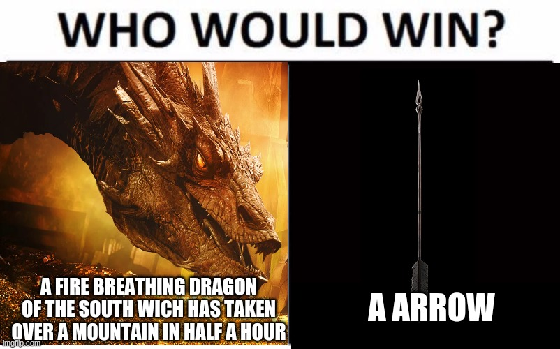 the ending of smaug in a nutchell |  A ARROW; A FIRE BREATHING DRAGON OF THE SOUTH WICH HAS TAKEN OVER A MOUNTAIN IN HALF A HOUR | image tagged in who would win | made w/ Imgflip meme maker