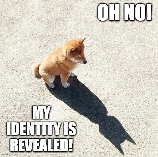 I'm Batman! |  OH NO! MY IDENTITY IS REVEALED! | image tagged in dogs,batman,shadow | made w/ Imgflip meme maker