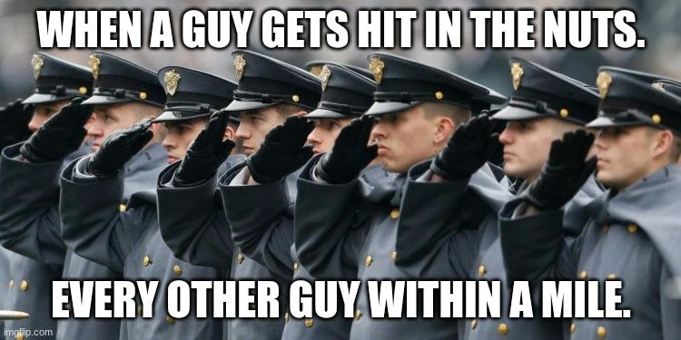 WHEN A GUY GETS HIT IN THE NUTS. EVERY OTHER GUY WITHIN A MILE. | image tagged in military salute | made w/ Imgflip meme maker