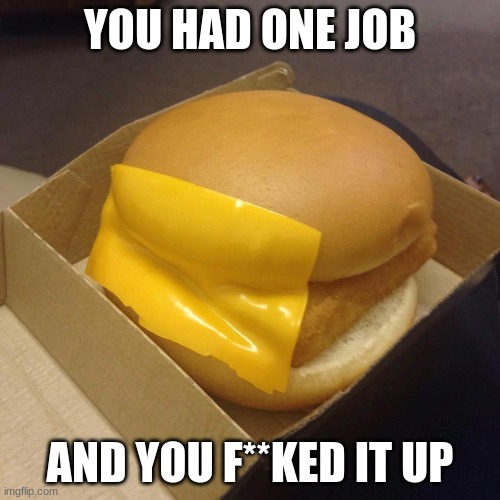 you had one job and you f**ked it up |  YOU HAD ONE JOB; AND YOU F**KED IT UP | image tagged in you had one job | made w/ Imgflip meme maker