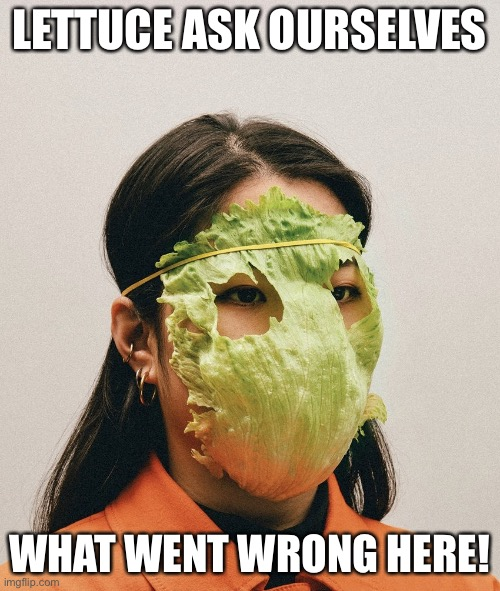 An Ineffective Corona Virus Mask |  LETTUCE ASK OURSELVES; WHAT WENT WRONG HERE! | image tagged in lettuce mask,coronavirus,funny memes,corona virus,covid19 | made w/ Imgflip meme maker