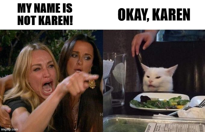 MY NAME IS NOT KAREN |  MY NAME IS NOT KAREN! OKAY, KAREN | image tagged in memes,woman yelling at cat | made w/ Imgflip meme maker