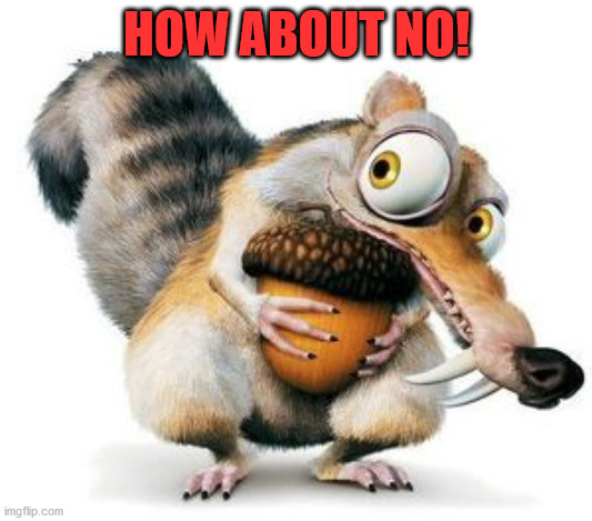 scrat weekend ice age | HOW ABOUT NO! | image tagged in scrat weekend ice age | made w/ Imgflip meme maker