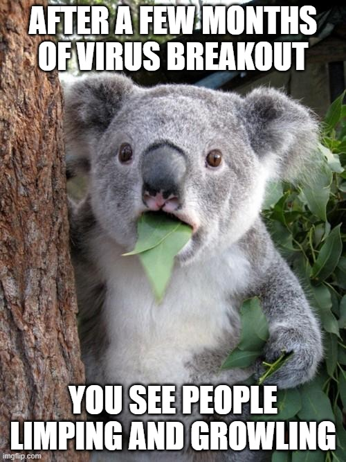 Surprised Koala |  AFTER A FEW MONTHS OF VIRUS BREAKOUT; YOU SEE PEOPLE LIMPING AND GROWLING | image tagged in memes,surprised koala | made w/ Imgflip meme maker