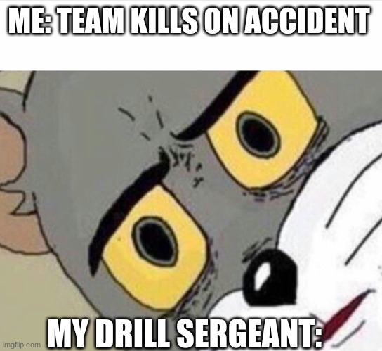 ME: TEAM KILLS ON ACCIDENT; MY DRILL SERGEANT: | image tagged in disturbed tom improved | made w/ Imgflip meme maker
