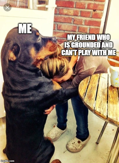 I'm here buddy |  MY FRIEND WHO IS GROUNDED AND CAN'T PLAY WITH ME; ME | image tagged in dog comforting human | made w/ Imgflip meme maker