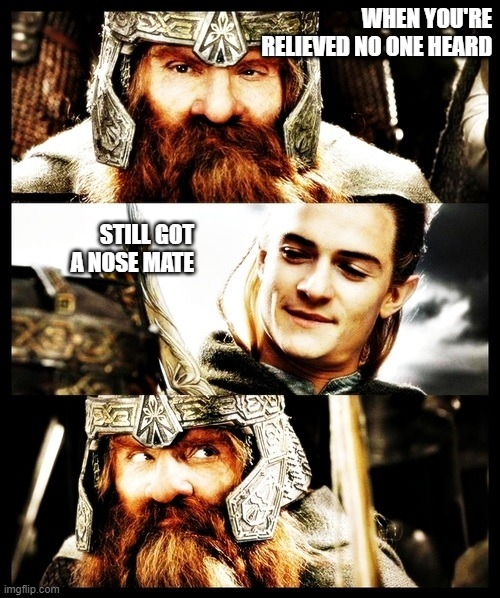 LOTR Side by Side |  WHEN YOU'RE RELIEVED NO ONE HEARD; STILL GOT A NOSE MATE | image tagged in lotr side by side | made w/ Imgflip meme maker