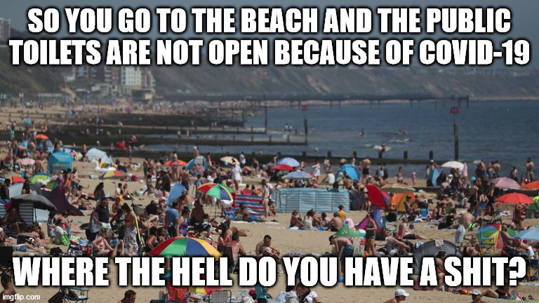 The beach |  SO YOU GO TO THE BEACH AND THE PUBLIC TOILETS ARE NOT OPEN BECAUSE OF COVID-19; WHERE THE HELL DO YOU HAVE A SHIT? | image tagged in covid-19,day at the beach,toilet,idiots | made w/ Imgflip meme maker