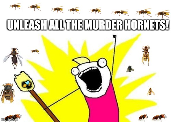 X All The Y |  UNLEASH ALL THE MURDER HORNETS! 🐝 | image tagged in memes,x all the y,murder hornets | made w/ Imgflip meme maker