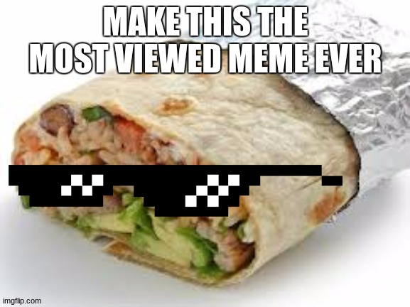 Make this the most viwed meme ever |  MAKE THIS THE MOST VIEWED MEME EVER | image tagged in mlg,burrito | made w/ Imgflip meme maker