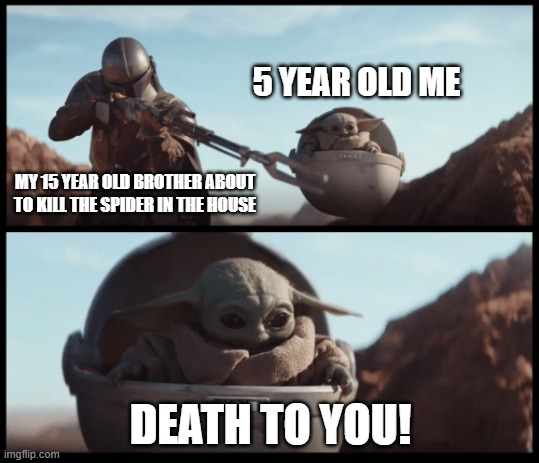 siblings when they work together |  5 YEAR OLD ME; MY 15 YEAR OLD BROTHER ABOUT TO KILL THE SPIDER IN THE HOUSE; DEATH TO YOU! | image tagged in baby yoda | made w/ Imgflip meme maker