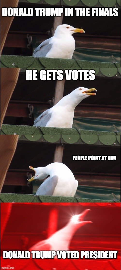 Inhaling Seagull Meme |  DONALD TRUMP IN THE FINALS; HE GETS VOTES; PEOPLE POINT AT HIM; DONALD TRUMP VOTED PRESIDENT | image tagged in memes,inhaling seagull | made w/ Imgflip meme maker