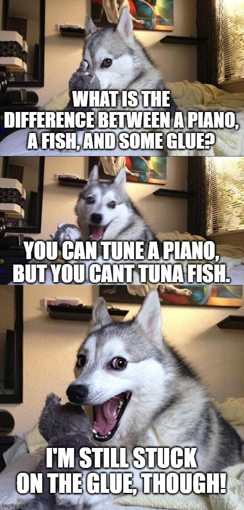 Bad Pun Dog Meme |  WHAT IS THE DIFFERENCE BETWEEN A PIANO, A FISH, AND SOME GLUE? YOU CAN TUNE A PIANO, BUT YOU CANT TUNA FISH. I'M STILL STUCK ON THE GLUE, THOUGH! | image tagged in memes,bad pun dog | made w/ Imgflip meme maker