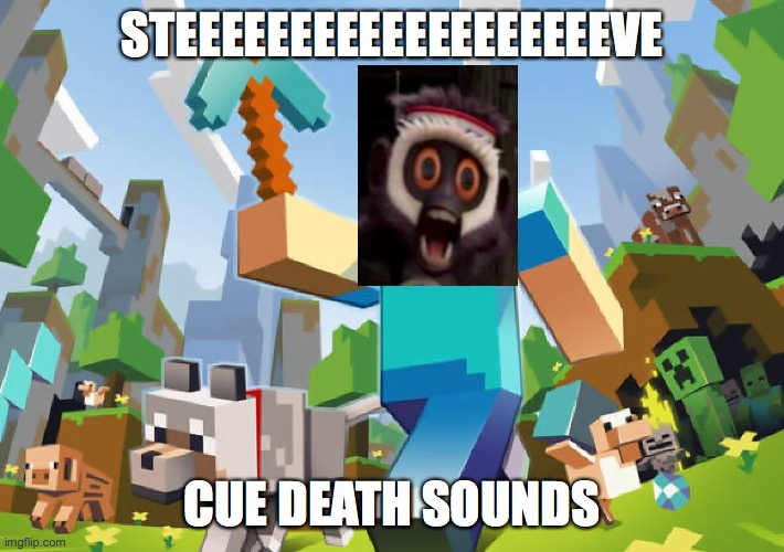 STEEEEEEEEEEEEVE |  STEEEEEEEEEEEEEEEEEEEVE; CUE DEATH SOUNDS | image tagged in minecraft | made w/ Imgflip meme maker